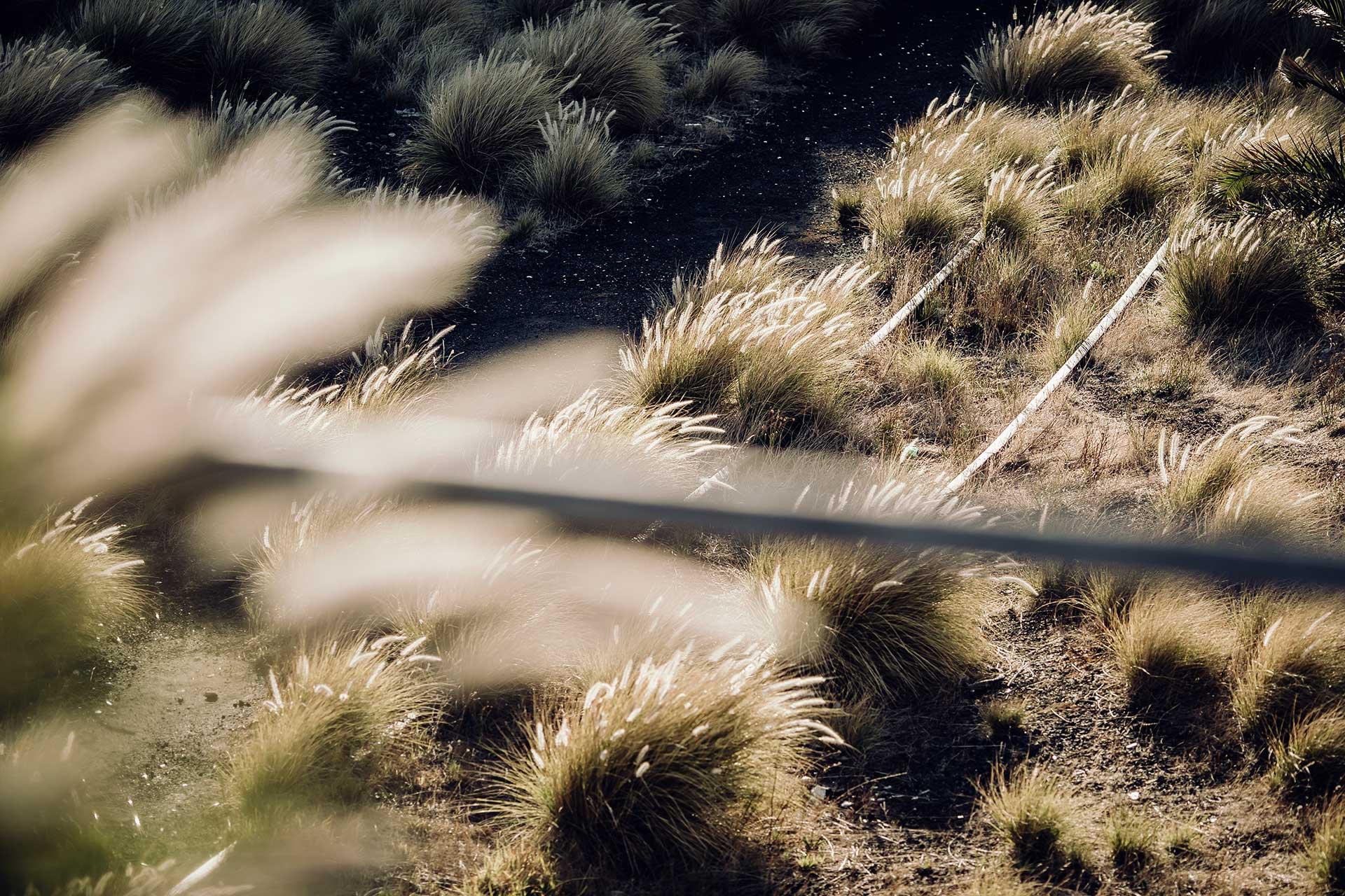 Fotograf Detail Landschaft Gegenlicht Training Outdoor Sport Südafrika