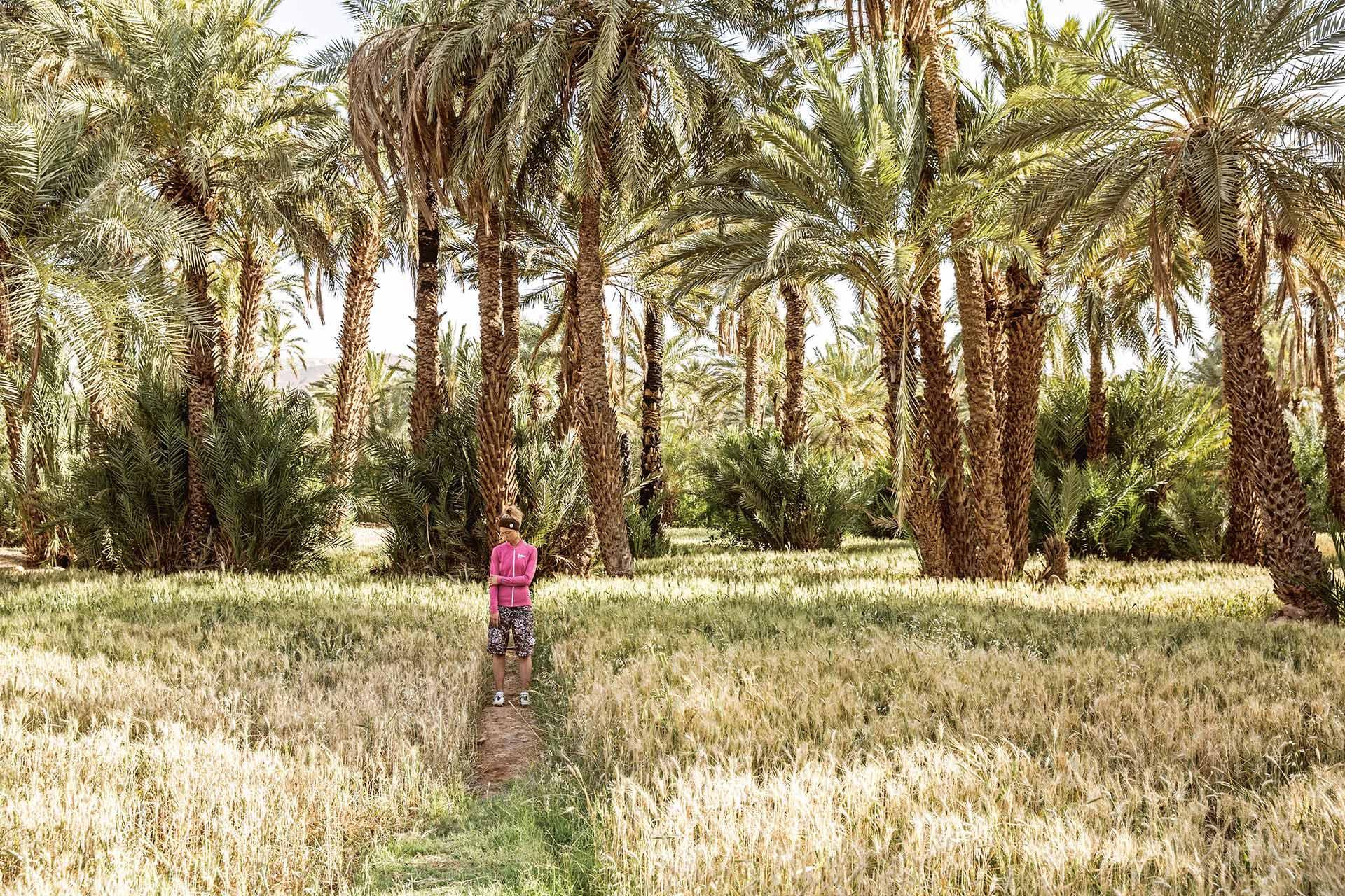 Travel Reisen Marokko Oase Palmen Frankfurt Deutschland Michael Müller