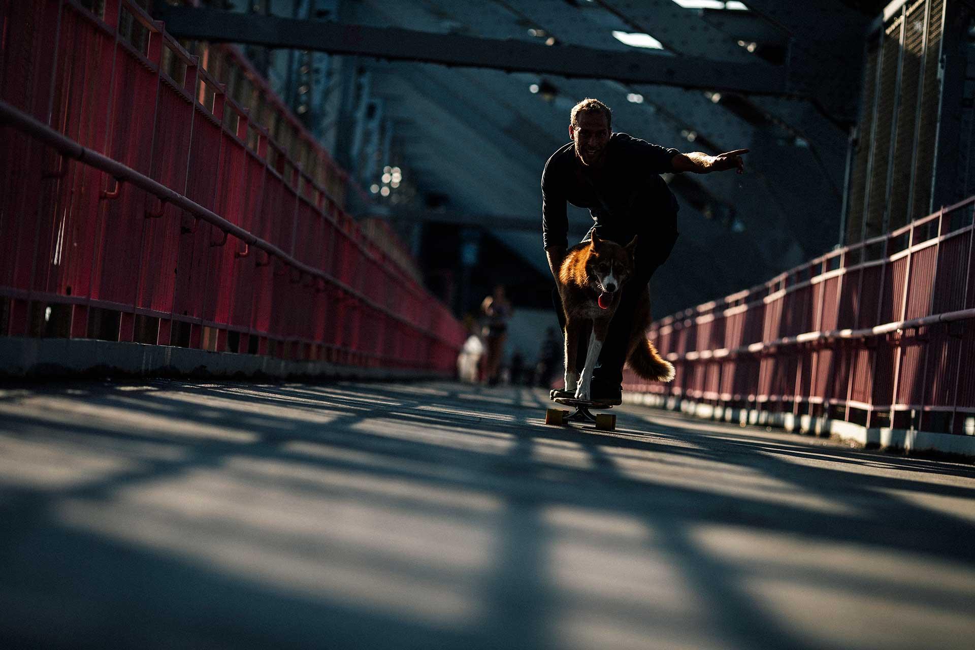 Brooklyn Brücke Skate Longboard Hund Urban Fotografie Lifestyle