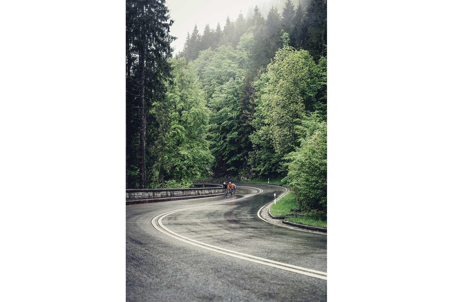 Wald Regen Sport Rennrad Radsport Fotograf Outdoor Straße Berge Salzburg